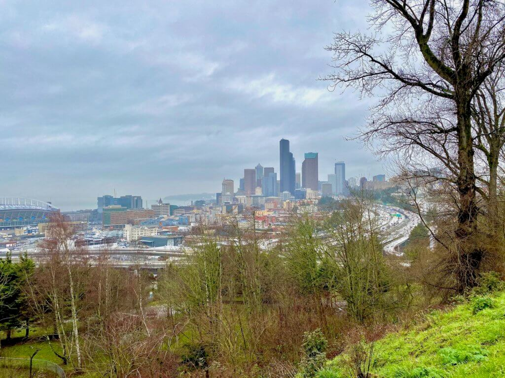 A sweeping panoramic view of the Seattle skyline from a panoramic viewpoint of Dr. Jose Rizal Park on Beacon Hill. The tall buildings of downtown Seattle rise in the background against gray stormy clouds and the grass is bright green on the hill with the trees in the foreground.