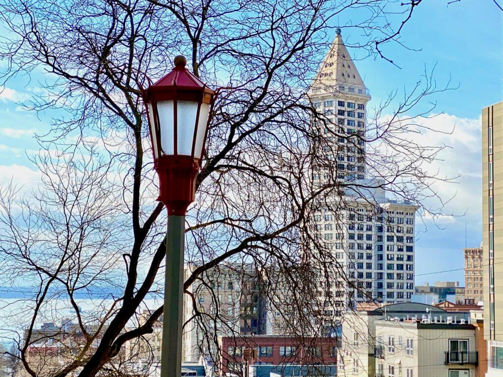 The famous Smith Tower rises up behind a large deciduous tree with no leaves in a winter month in Seattle. The sky is bright blue with a few clouds while a red street light rises up in the foreground, with design hints of Chinatown.