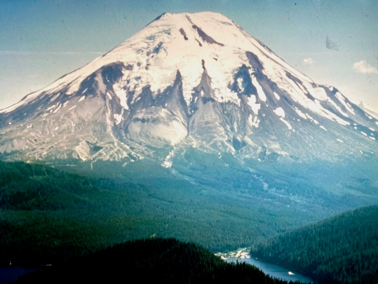 A photo from exhibit in the Mt. St. Helens Visitor Center showing the lovely snow capped mountain peak before the devastating eruption that would remove the top third of the peak.  This shot shows snow and glaciers on the top of the mountain transitioning to gray rocky areas that lead to a thick carpet of green fir trees flowing towards Spirit Lake.