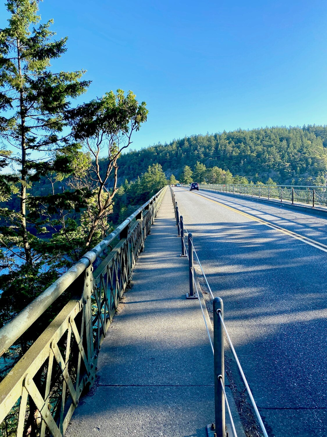 Deception Pass bridge on the highway toward Anacortes.  The narrow sidewalk on the left side of the busy road follows off into the back of the photo, while a fir tree frames the left side of the picture.  Two cars drive away from the camera towards a rolling hill of sound fir trees.