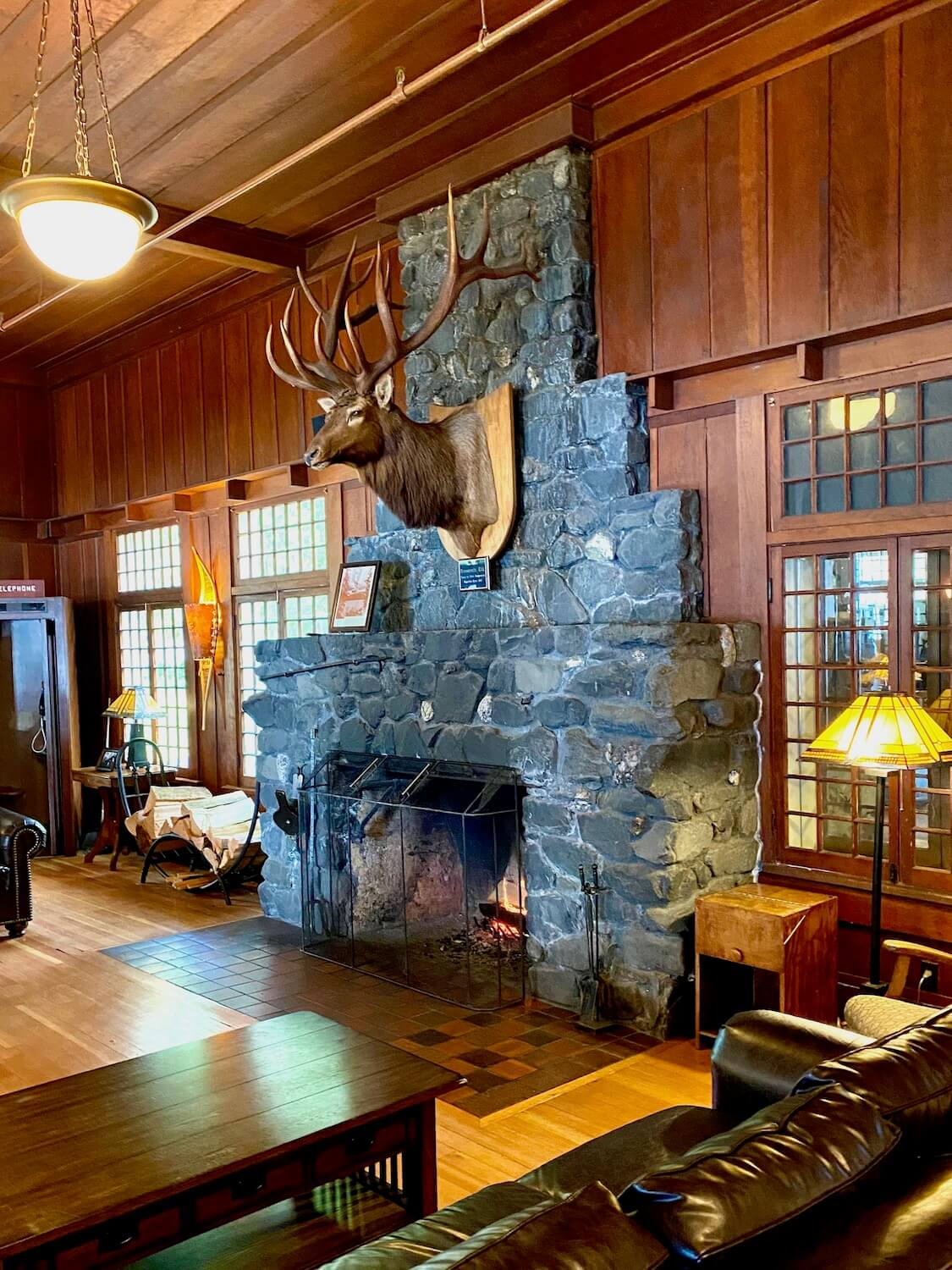 The rich interior of Lake Crescent Lodge offers a throwback to early Olympic National Park days. The head of a large Roosevelt Elk, complete with a large rack of horns, is mounted on the gray stone fireplace mantle. A lush brown leather couch frames in the lobby area with a yellow stained glass lamp and hundreds of tiny square pane windows creating three distinct doorways out to the forest.