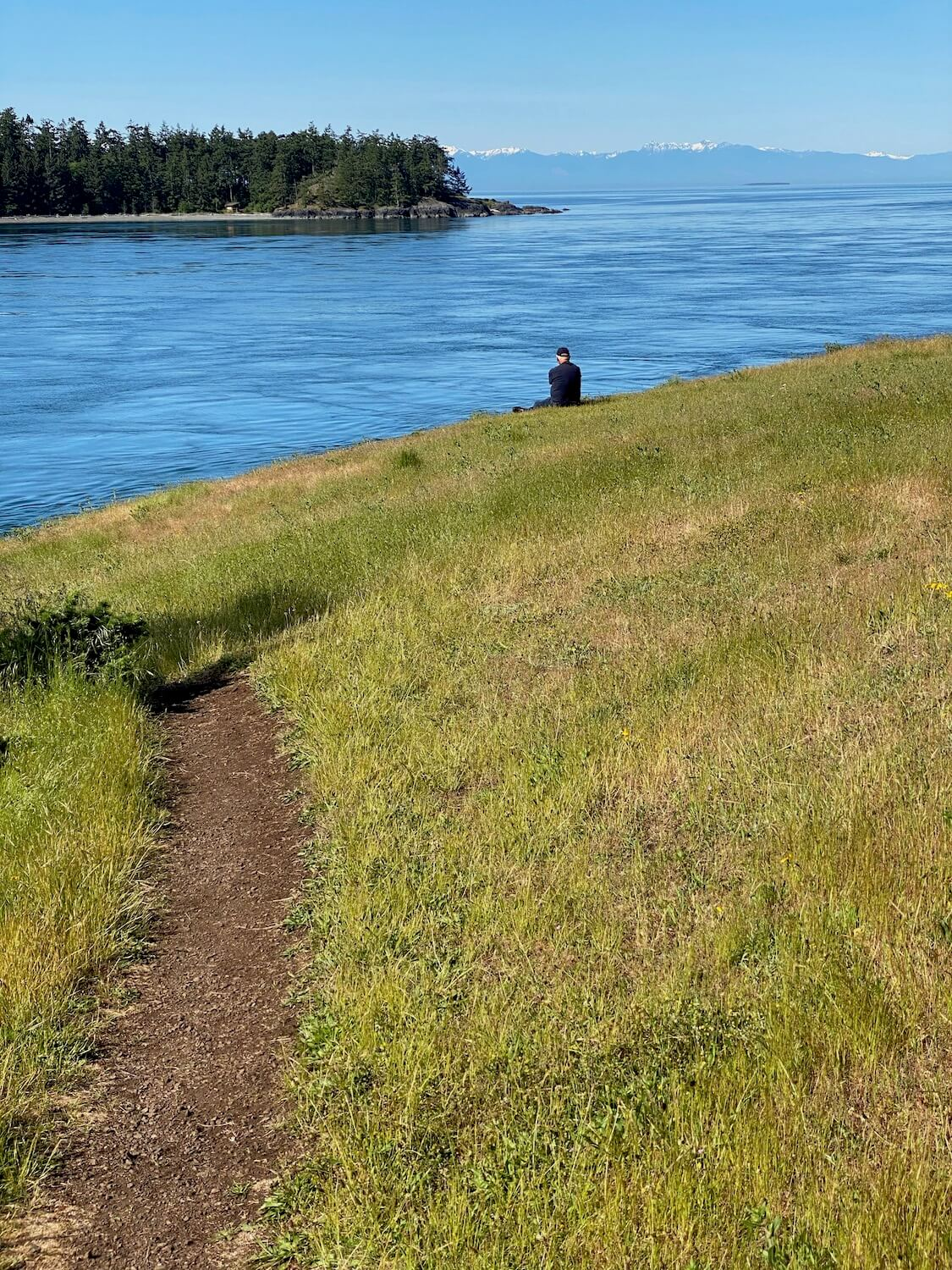 A day trip from Seattle to Deception Pass and Anacortes is food for the soul on a beautiful day like the one in this picture.  A man sits on a wide grassy meadow overlooking a flowing body of water that is part of the Salish Sea. Across the water is more land with gray sandy beaches and tall green firs.  In the far distance the Olympic Mountains rise up with bits of snow covered peaks.
