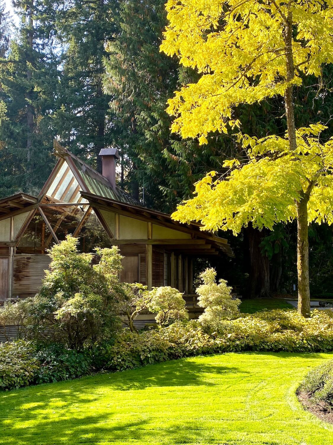 The Japanese Guest House at Bloedel Reserve is iconic with the geometric structure of wood beams filled with glass and sits amongst a formal mature garden with flowing green lawns and well trimmed shrubbery.