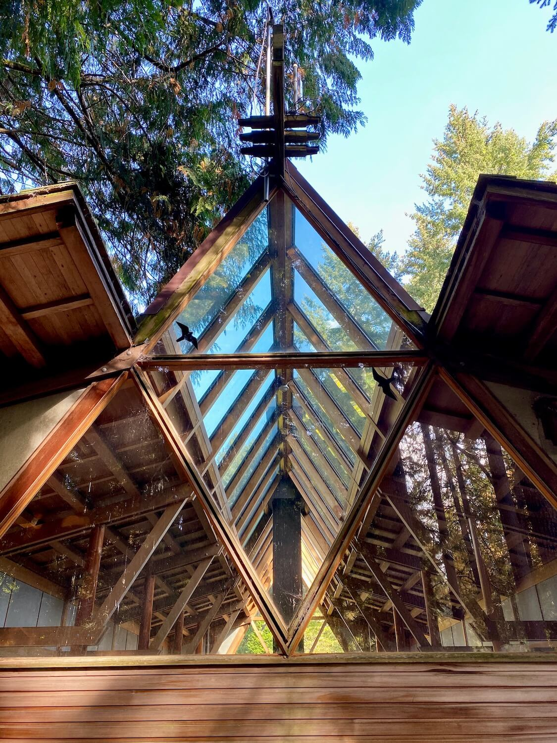 The Japanese Guest House at Bloedel Reserve is iconic with the geometric structure of wood beams filled with glass and rises at a peak to open up to the blue sky and fir tree above.
