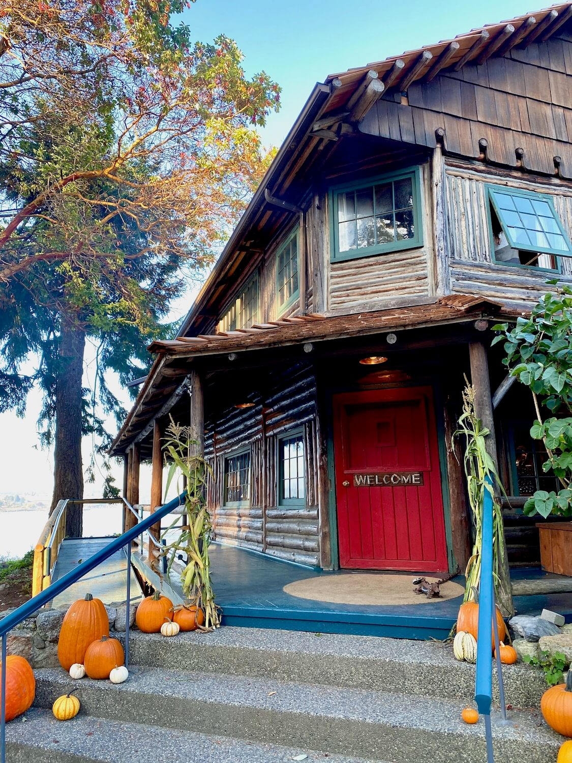 """The entrance to Captain Whidbey Inn has a bright red door with a sign painted on brown wood that reads """"Welcome."""" There are orange pumpkins lining the three steps up from the road to the greenish blue decking that is part of the wrap around porch. The side of the budding is log cabin style with a blue sky above and next to a madrone tree."""