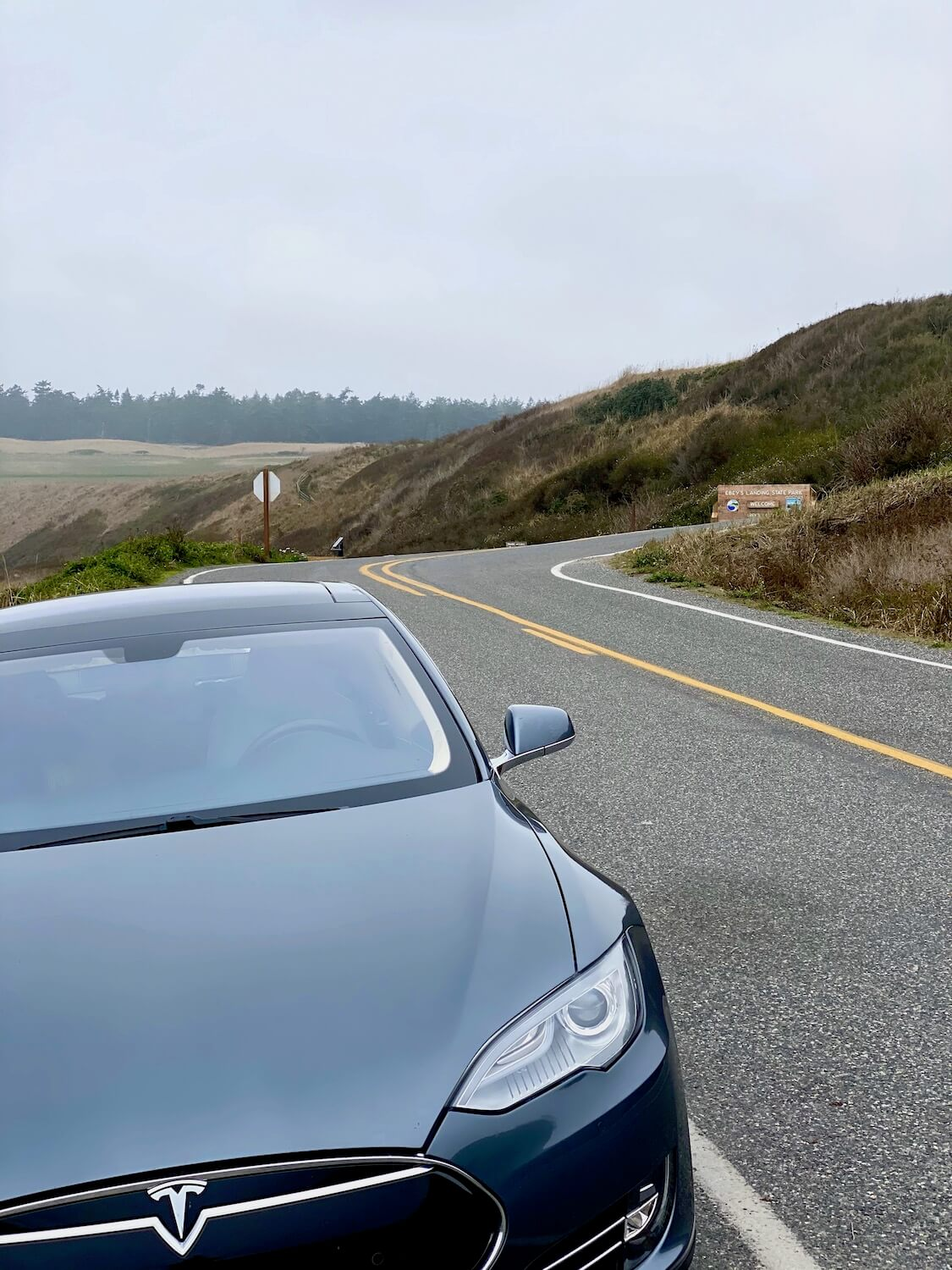 A gray colored Tesla S series sits parked on the side of a winding coastal road in the Puget Sound of Washington State.  There are rolling hills with green sea grass and fir trees in the background.