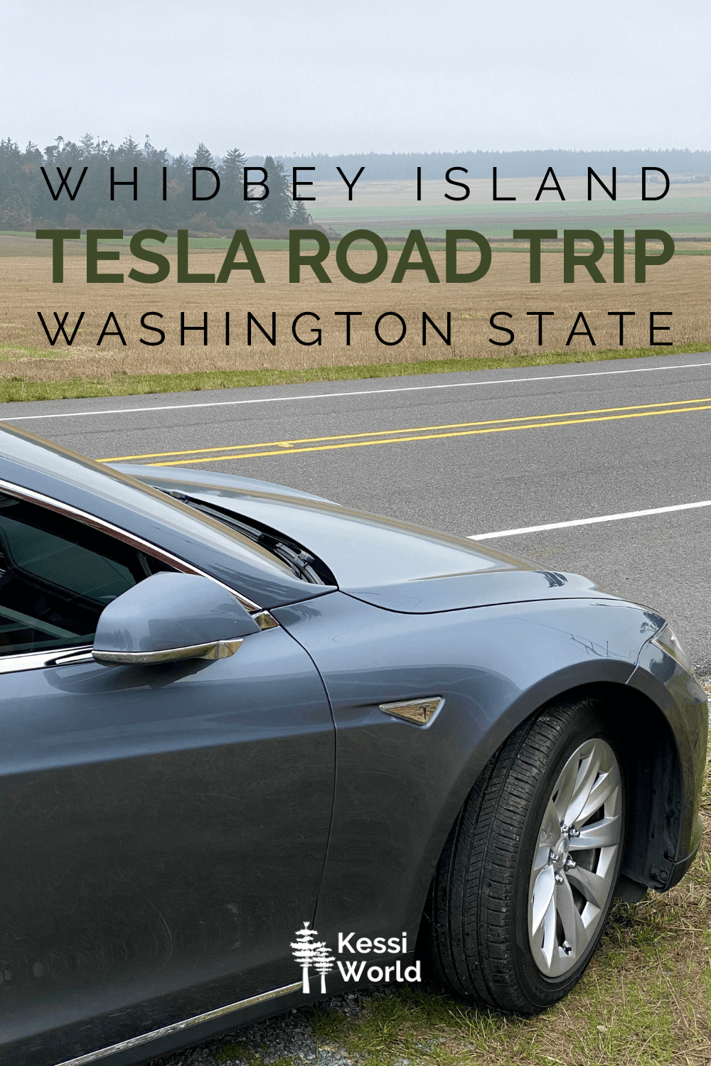Pinterest tile of a Tesla at the side of a country roadway with a harvested filed in the background framed in by fir trees and rolling green pastures.