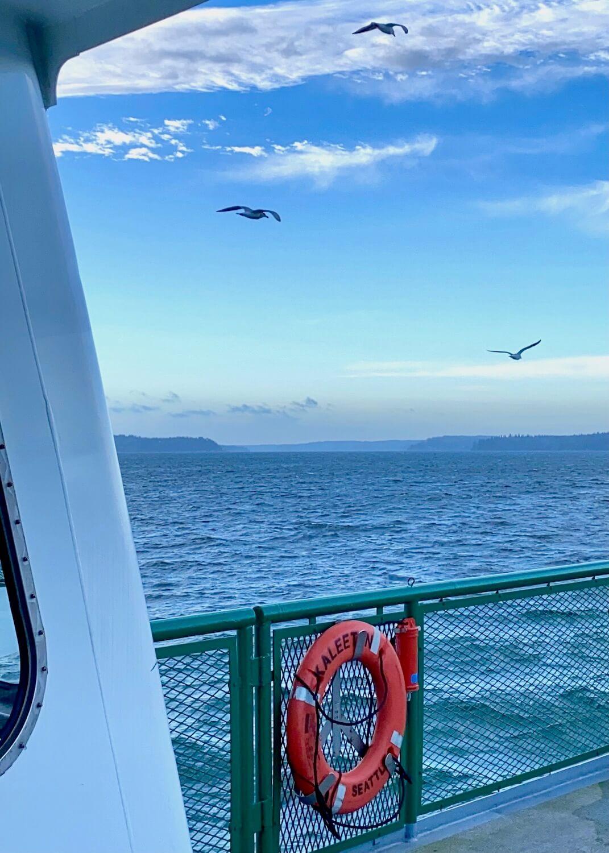 Three seagulls sail along with a Washington State Ferry as it chugs toward Bremerton, Washington.  There is an orange life ring that says the Kaleetan secured onto a green railing.
