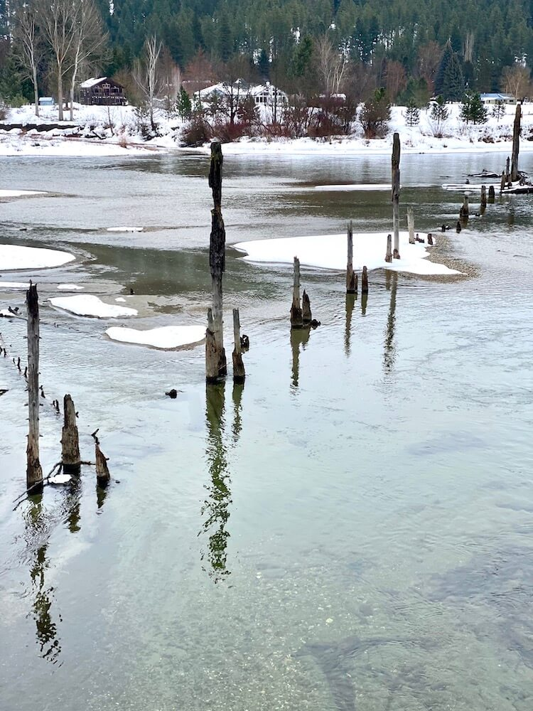 The peaceful Wenatchee River drifts through Leavenworth, Washington amongst Winter drifts of snow that collect around old log pilings.  In the background there are red bushes that pop in contrast with the snow on the bank of the river.