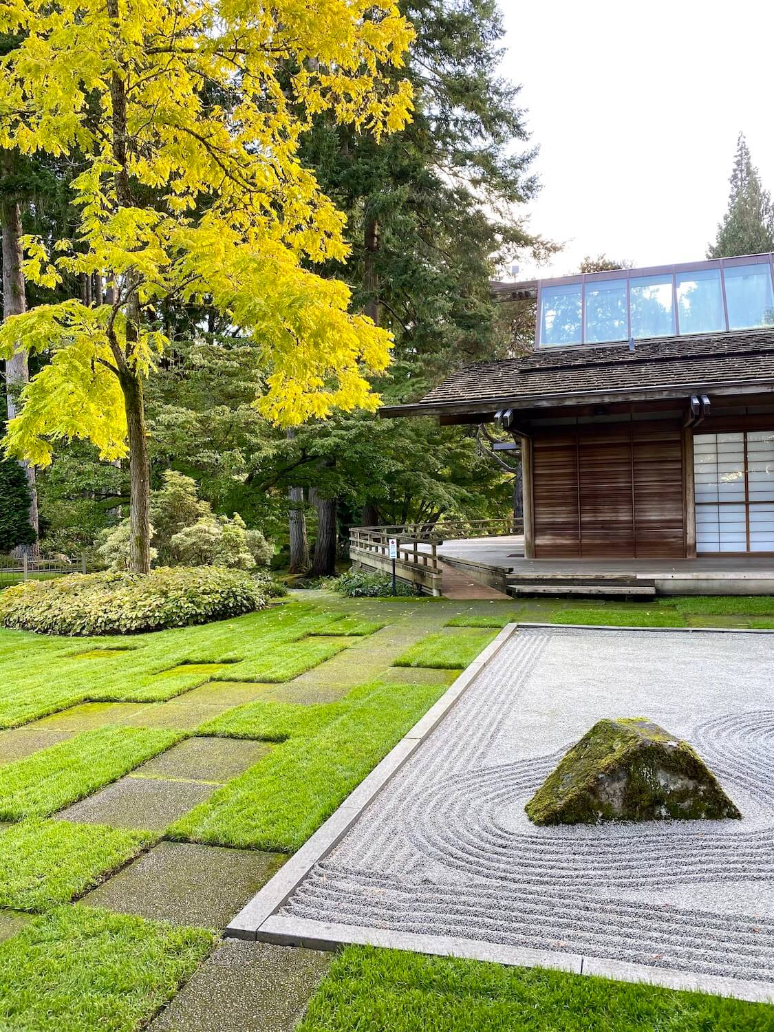 The peaceful Zen garden showcases a raked gravel plot with large rocks strategically placed next to square patches of mowed green grass while large trees with yellow leaves flow in the background next to a wood Japanese style tea house with vaulted glass ceilings.