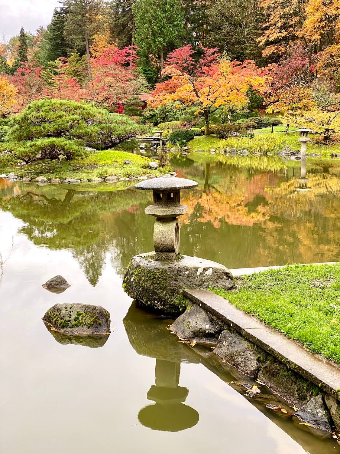 The Seattle Japanese Garden is perhaps one of the most inspiring in the city, with a large calm pond with lanterns casting shadows on the water.  The maple trees are changing colors with their leaves.