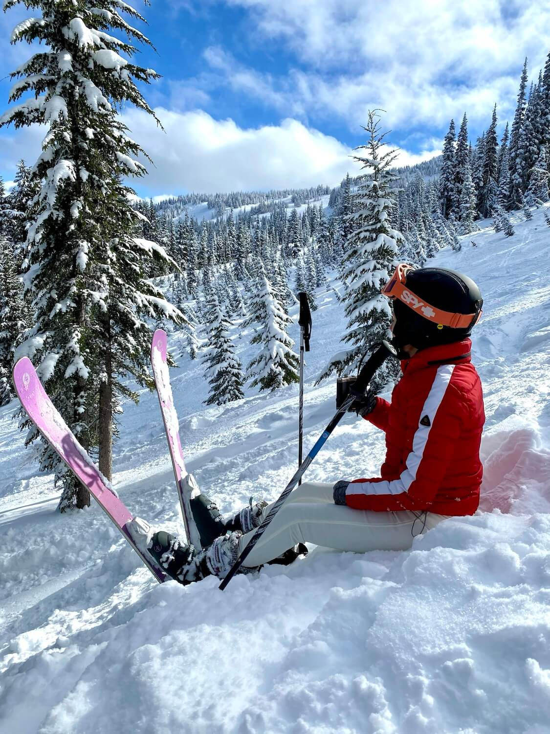 A skier takes a break by sitting in the fluffy snow.  Her purple skis are stuck into the snow and she is wearing a red jacket with white pants.  There are small fir trees covered in powdery snow while the blue sky shines above.