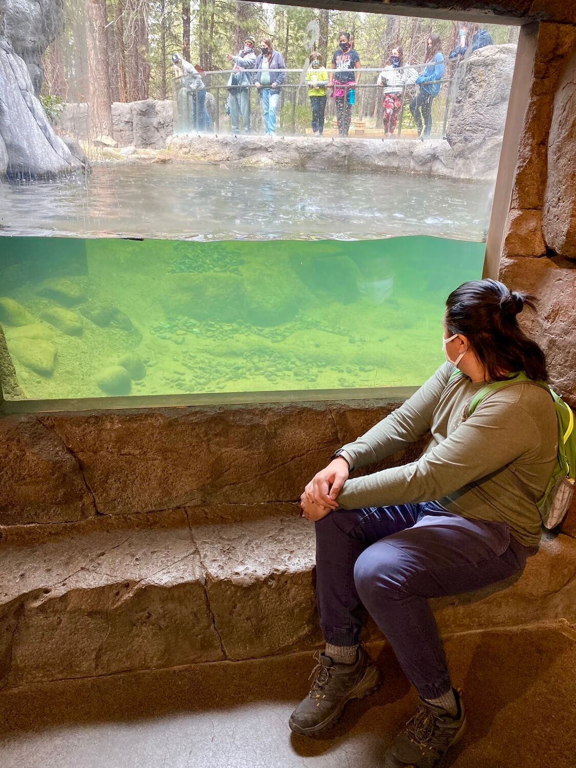A man sits on a step while looking out into the water pool with otters swimming in the distance.  Other spectators are outside above the water looking into the pool. This installment is located at the High Desert Museum in Central Oregon.