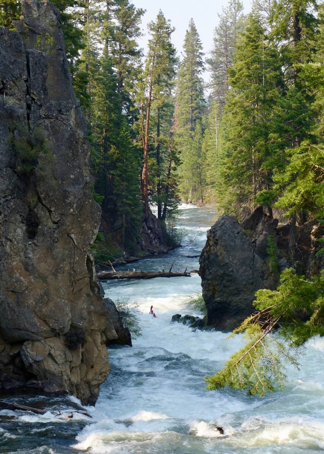 The Deschutes River winds through a canyon which is eroded away lava beds from a nearby volcano.  Rafting or paddling the river is a great thing to do in Bend, Oregon.  The fir trees are bright green and growing almost out of the rock that frames in the rushing white water of the wild river.