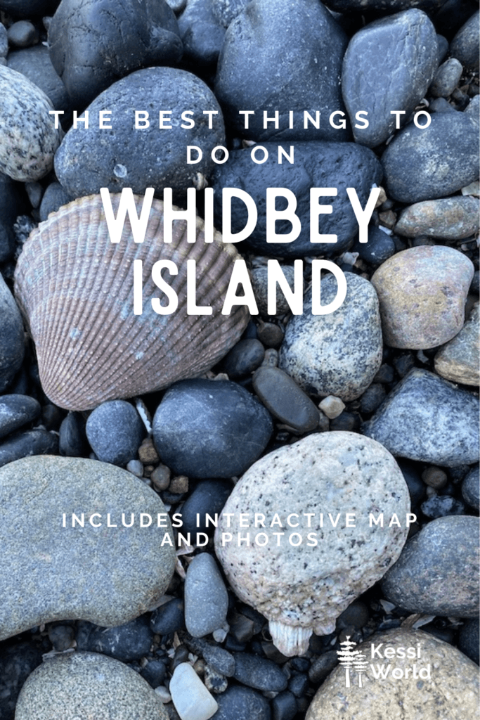 Pinterest Pin showing a beach shot with a variety of rocks of different sizes and shapes as well as a scalloped seashell.  The tile depicts things to do on Whidbey Island.