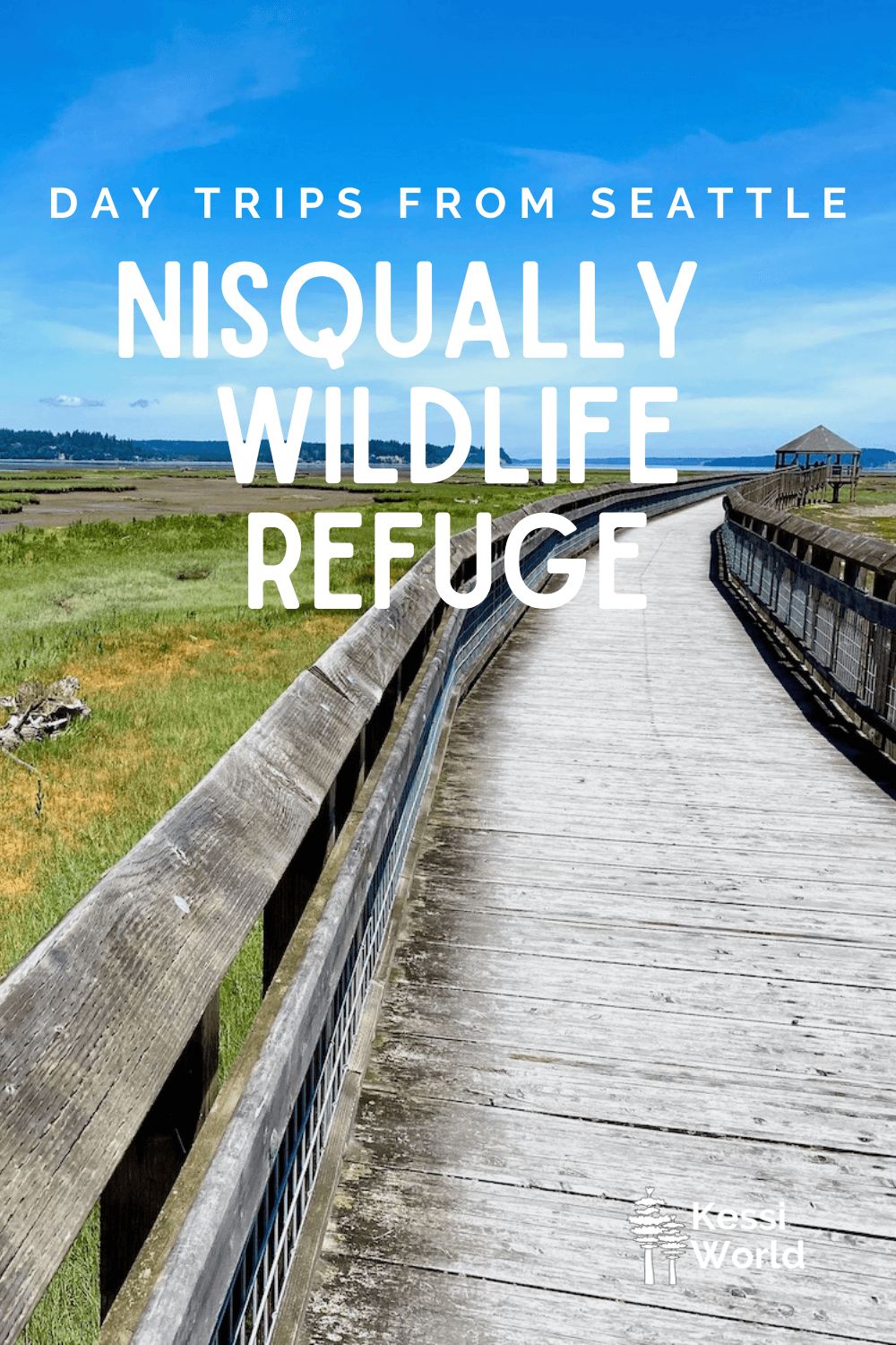 """This Pinterest pin displays white letters that read """"day trips from Seattle"""" and highlights Nisqually Wildlife Refuge. The photo shows a wood boardwalk winding along green grass and yellow flowers below. The trail leads to a wood gazebo that can be seen in the distance below a blue sky."""