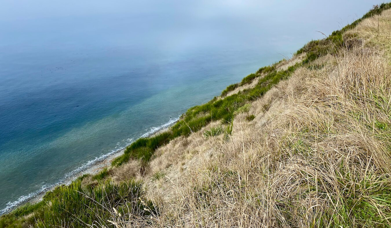 The dramatic trail at Ebey's Landing State Park is an exciting thing to do on Whidbey Island. Here the diagonal slope of the bank leading down to the sea is mixed with green and dried grasses while the aqua colored water is peacefully flat.