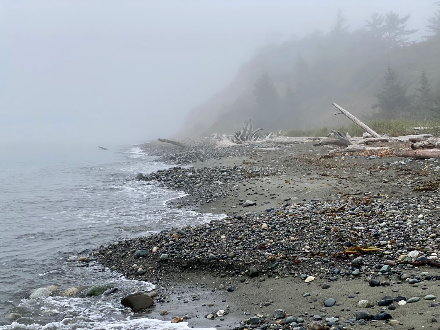 Exploring a misty beach is a great thing to do on Whidbey Island. The fog rises above fir trees in the background where we can barely make out the contour of the land. In the foreground waves lap up onto the rocks of the beach, while drift logs stagger in the background.