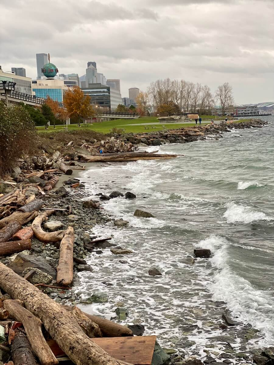 Waves crash on the shore of Downtown Seattle with the skyline of the city in the background. There are drift logs on the beach and the water is churning a green color with white caps.